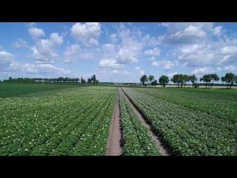 Російські агрохолдинги сьогодні й завтра фото, ілюстрація