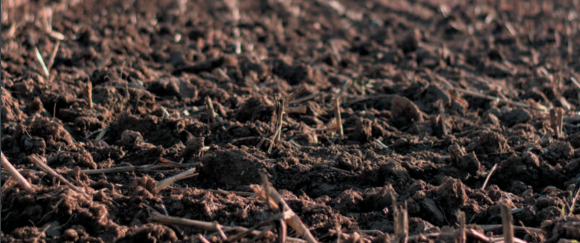 Регулирование и оптимизация агрофизических свойств почвы фото, иллюстрация