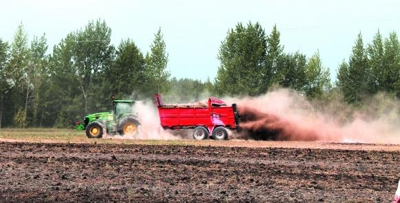 Как уменьшить кислотность почвы? фото, иллюстрация