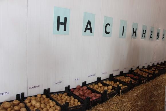 Гармонізація законодавства України по насіннєвій картоплі в рамках Угоди про асоціацію між Україною та ЄС фото, ілюстрація