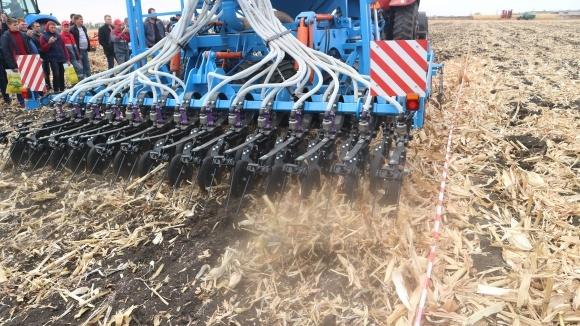 Сроки посева озимой пшеницы в зависимости от предшественников фото, иллюстрация