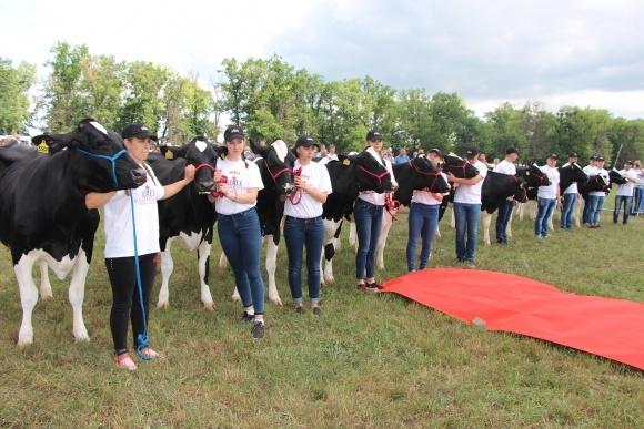 Первый Канадский День молока в Украине фото, иллюстрация