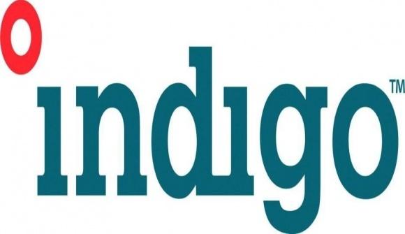 Indigo 30 допоможе подолати посуху і збільшити врожайність фото, ілюстрація