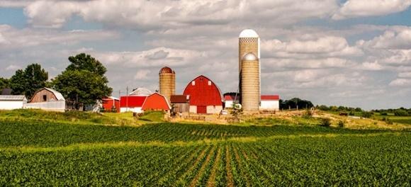 Как живется американским фермерам в Айове фото, иллюстрация