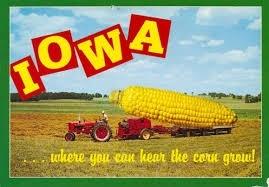 Секрети вирощування кукурудзи в Айові фото, ілюстрація
