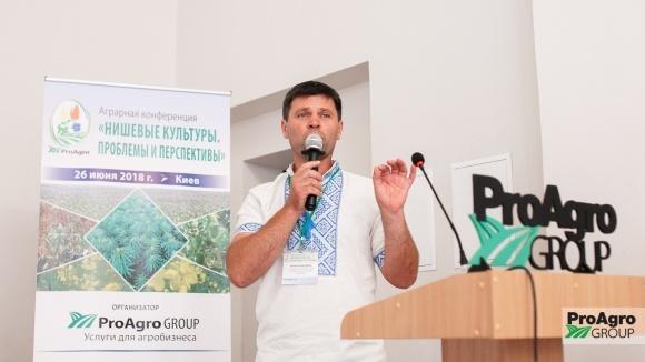 Выращивания амаранта: вопросы и ответы фото, иллюстрация
