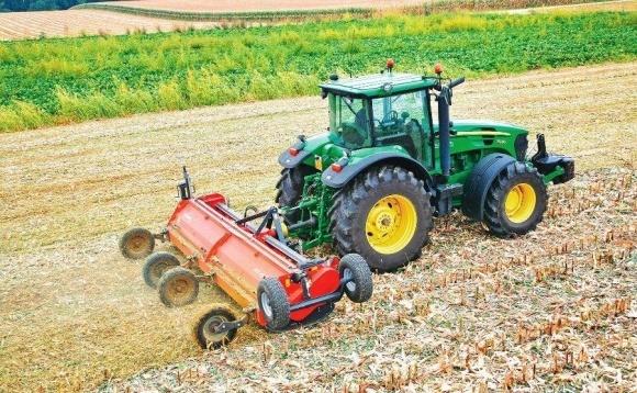 Мульчирование почвы: риски и приоритеты фото, иллюстрация