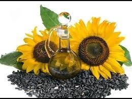 Що слід знати, щоб якісну соняшникову олію мати фото, ілюстрація