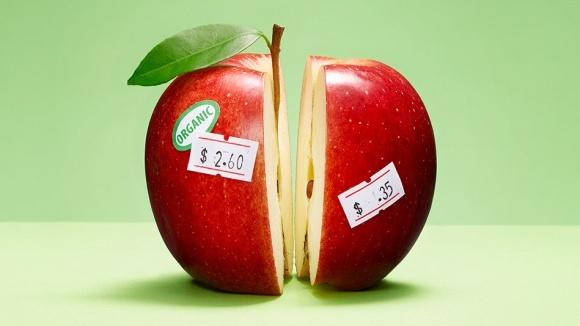 Сорти яблук для органічного садівництва фото, ілюстрація