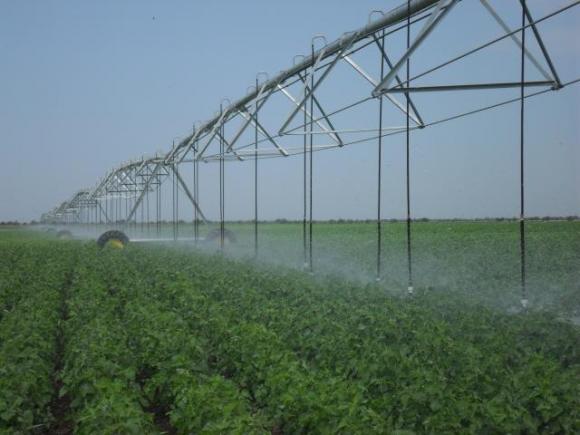Орошение как фактор устойчивого урожая фото, иллюстрация