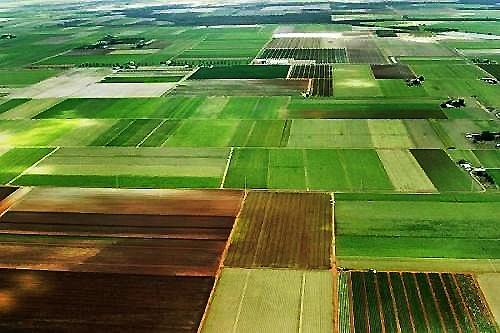 «Шахматка»: до яких змін в земельному законодавстві потрібно готуватися аграріям в 2019 році фото, ілюстрація