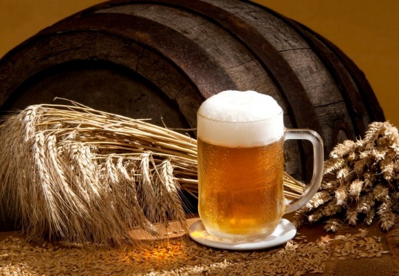 Пивоваренный ячмень - выгодная ниша фото, иллюстрация