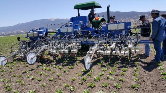 До 2025 г. мировой рынок роботов для прополки сорняков будет составлять $400 млн фото, иллюстрация