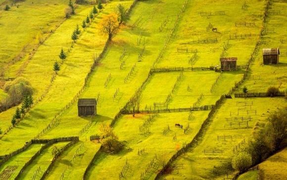 Поле битви - земля. Румунський ринок землі фото, ілюстрація
