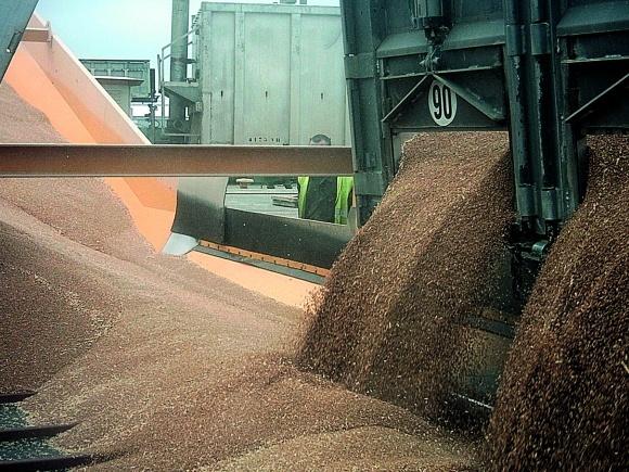 Логистика экспорта зерна в Украине фото, иллюстрация