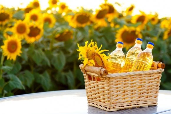 Реалії ринку олійних культур України фото, ілюстрація