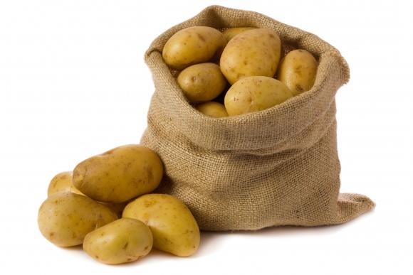Вірусні хвороби картоплі фото, ілюстрація