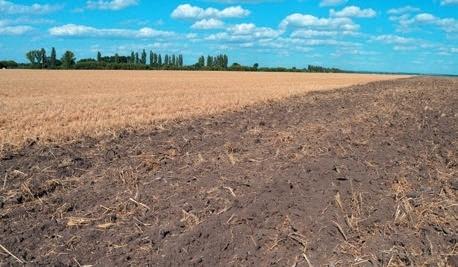 Удобренние кукурузы на эродированных почвах фото, иллюстрация