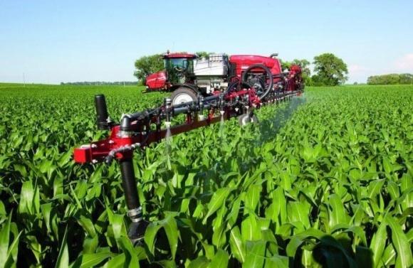 Особенности внекорневой подкормки сельхозкультур цинком фото, иллюстрация