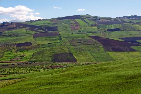 Советский оскал капитализма делает невозможной охрану земель. Мораторий на продажу земли фото, иллюстрация