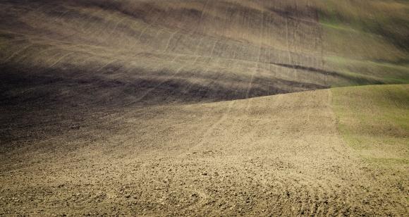 Почвозащитная обработка под озимую пшеницу на склонах фото, иллюстрация