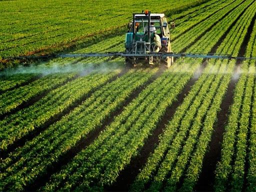 Популярність пестицидів і небезпека виникнення резистентності фото, ілюстрація