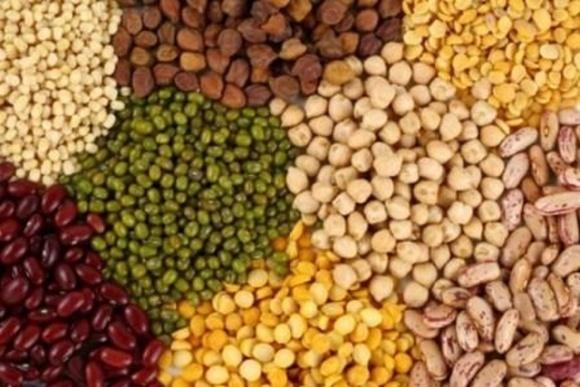 В Индии рассматривают снятие количественных ограничений на импорт бобовых фото, иллюстрация