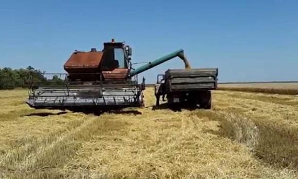 Жатва-2018: украинские аграрии собрали более 8 млн тонн зерна фото, иллюстрация