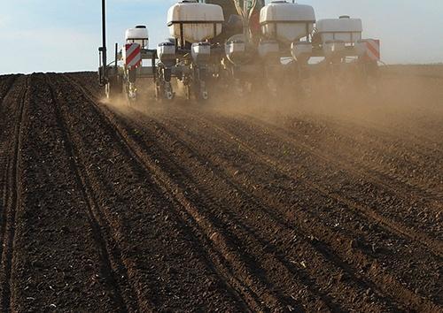 Аграрии засеяли 2 млн га яровыми зерновыми культурами фото, иллюстрация