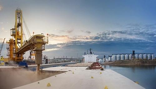 """Арабські власники агрохолдингу """"Мрія"""" підшукують зерновий термінал на Чорному морі фото, ілюстрація"""