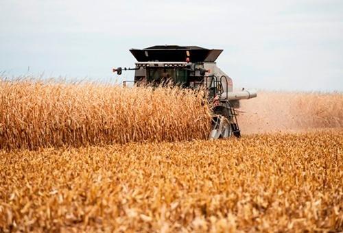 Аграрії Хмельницької області завершили сівбу озимих зернових фото, ілюстрація