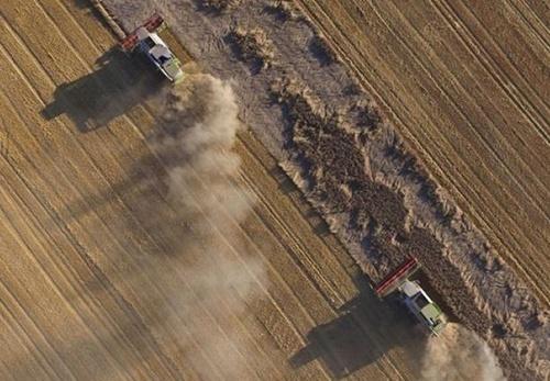 Що радять економісти фермерам, у яких немає грошей на придбання землі фото, ілюстрація