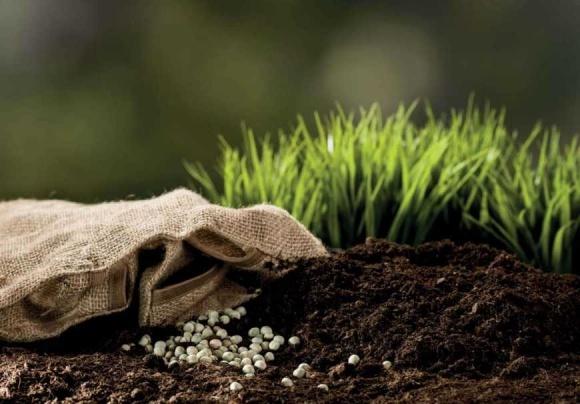 «Аграрный фонд» начинает осеннюю кампанию по реализации и обмену на сельхозпродукцию минеральных удобрений фото, иллюстрация