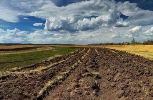 Ринок землі: 5 ключових моментів нового законопроекту фото, ілюстрація