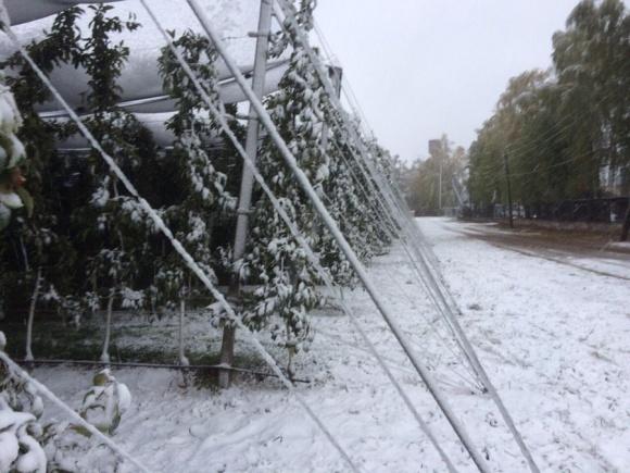 Снегопад на Винничине. Интенсивные сады фото, иллюстрация