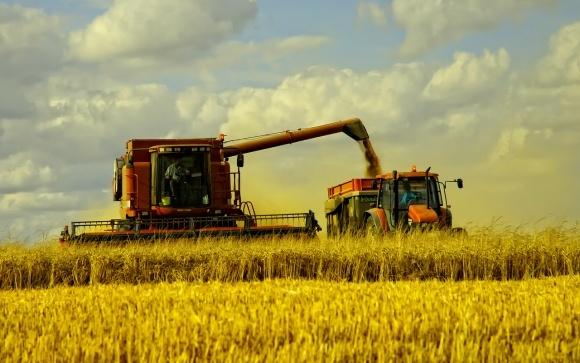 Мировое производство зерна в 2018 году будет самым низким за последние три года, – ФАО фото, иллюстрация
