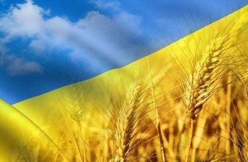 Отгрузки украинского зерна с начала 2019/20 МГ превысили 5 млн тонн фото, иллюстрация