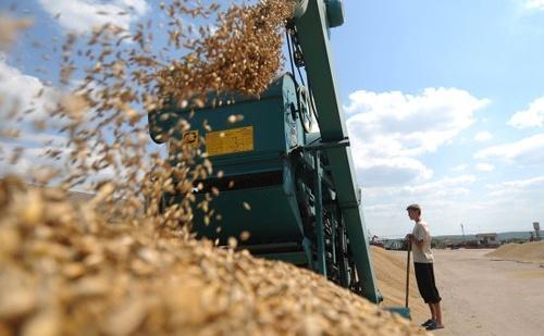 Зростання сільгоспвиробництва в Україні в січні склав 3%, - Держстат фото, ілюстрація