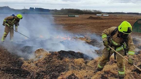 Як свині за допомогою крокоміра спричинили пожежу на фермі фото, ілюстрація