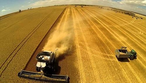 Названо агрохолдинги-лідери за обсягами інвестицій в «розумні аграрні технології» фото, ілюстрація