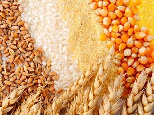 Почти все области Украины приступили к уборке ранних зерновых культур фото, иллюстрация