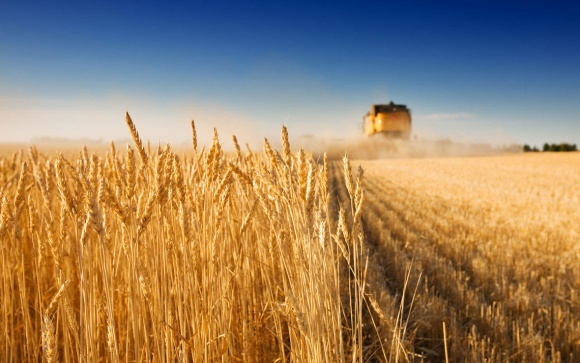 Україну відвідала делегація представників французьких аграрних стартапів фото, ілюстрація