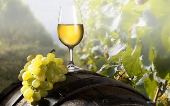 Україна продовжила санкції для кримських виноробних і агропідприємств фото, ілюстрація
