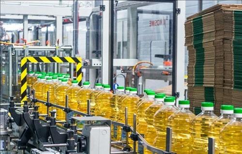 ЕС увеличило импорт подсолнечного масла из Украины фото, иллюстрация