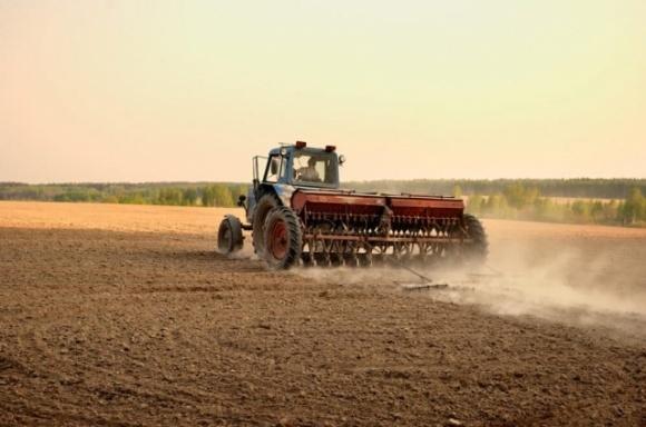 В Украине наиболее выгодно заниматься сельским хозяйством –Госстат фото, иллюстрация