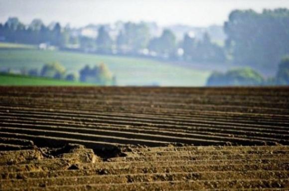 Хмельницька облрада закликає Президента продовжити земельний мораторій до 2025 року фото, ілюстрація
