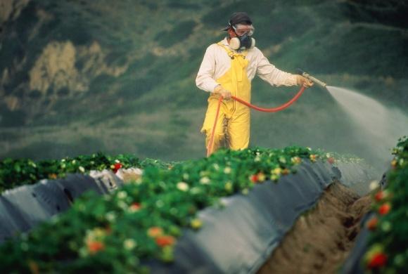 17 країн підписали заяву про безпечне застосування пестицидів фото, ілюстрація