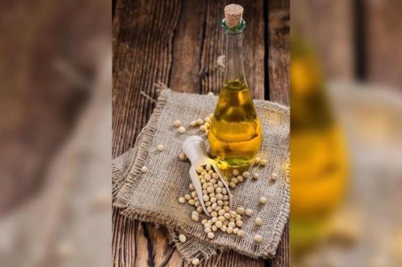 Рост цен на сою повлек за собой увеличение цены подсолнечника в Украине фото, иллюстрация