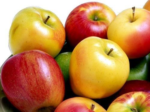Фермеров предупредили, что дешевых яблок не будет фото, иллюстрация