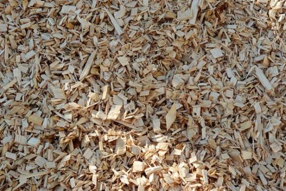 У Запорізькій області запустили проект переробки деревини для отримання енергії фото, ілюстрація